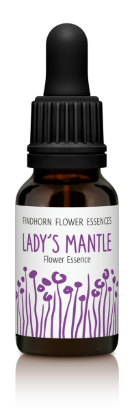Findhorn - Lady´s Mantle 15ml