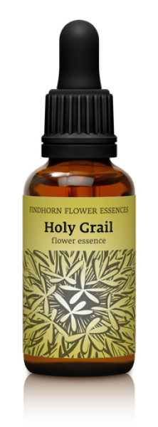 Findhorn - Holy Grail 30ml