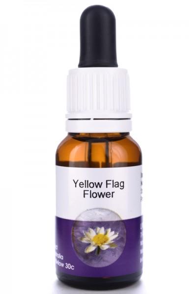 Yellow Flag Flower 15ml