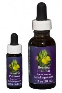 F.E.S. - Evening Primrose (Nachtkerze)