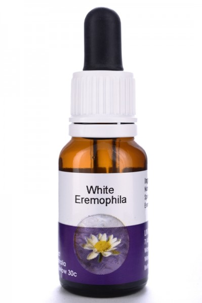 White Eremophilla 15ml