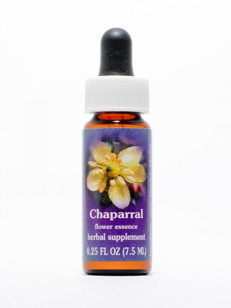 F.E.S. - Chaparral (Creosote Busch)