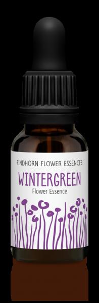 Findhorn - Wintergreen 15ml