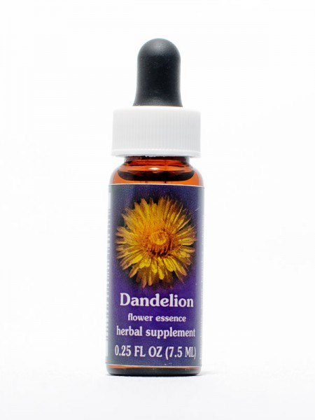 F.E.S. - Dandelion (Löwenzahn)