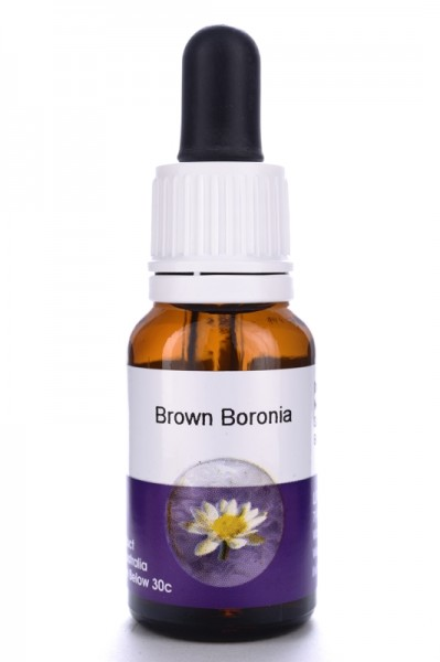 Living Essences Brown Boronia 15ml
