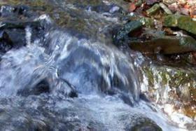 Iris Flora - Rock Water / Quellwasser 20ml