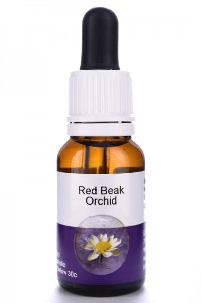 Living Essences Red Beak Orchid 15ml