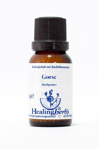 Healing Herbs - Gorse (Stechginster) Globuli 15gr
