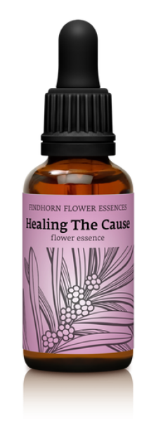 Findhorn - Healing the Cause 30ml