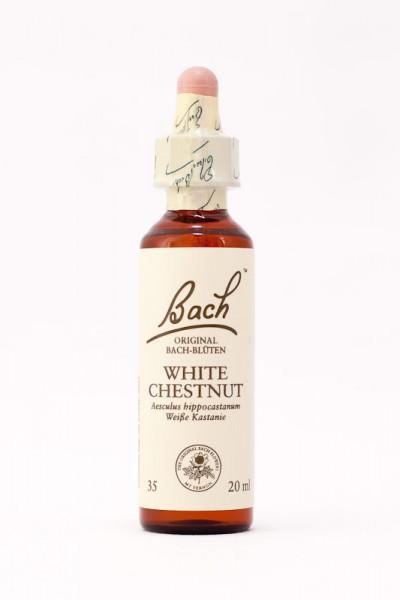 Bach Original - White Chestnut (Rosskastanie, Weiße Kastanie) 20ml