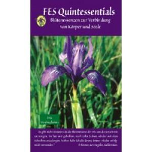 Info-Broschüre FES Quintessentials