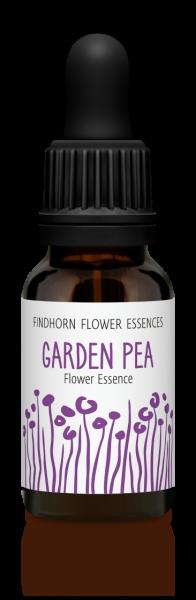 Findhorn - Garden Pea 15ml