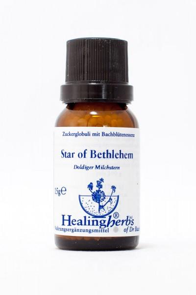 Healing Herbs - Star of Bethlehem (Doldiger Milchstern) Granules 15gr