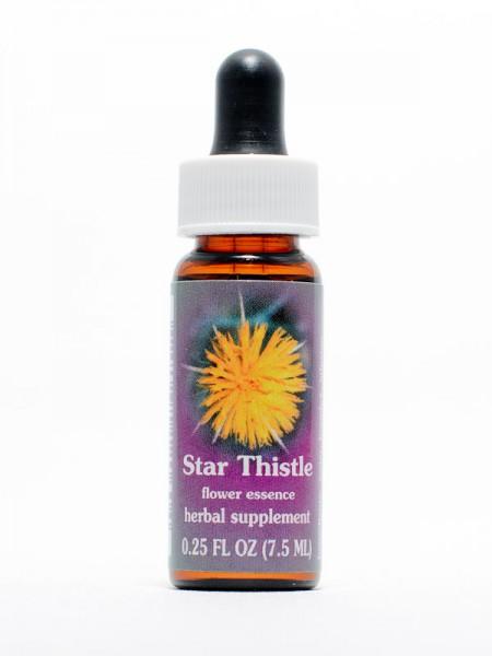 F.E.S. - Star Thistle (Sonnenwendflockenblume)