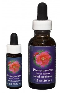 F.E.S. - Pomegranate (Granatapfel)