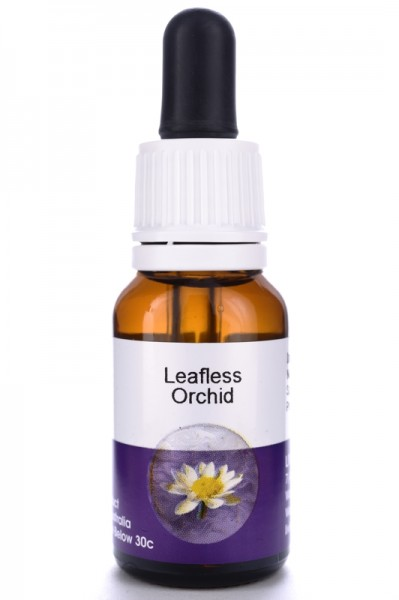 Leafless Orchid 15ml