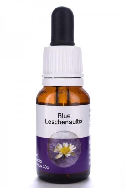 Living Essences Blue Leschenaultia 15ml (MHD 08/15)