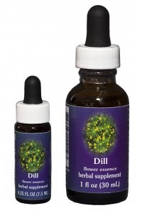 FES - Dill