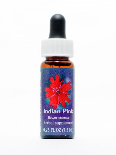 F.E.S. - Indian Pink (Leimkraut)