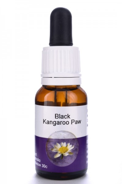 Living Black Kangaroo Paw 15ml