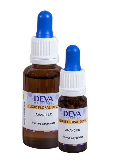 DEVA - Almond / Amandier