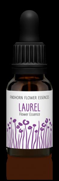 Findhorn - Laurel 15ml