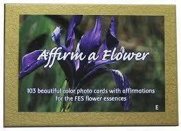 FES Affirm a Flower Kartenset - Englisch