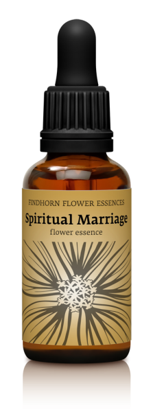 Findhorn - Spiritual Marriage 30ml