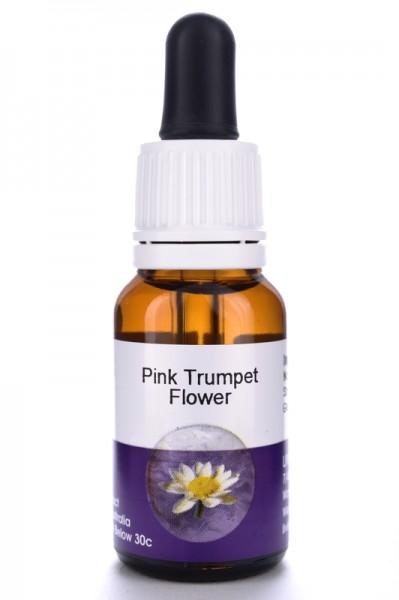 Pink Trumpet Flower 15ml
