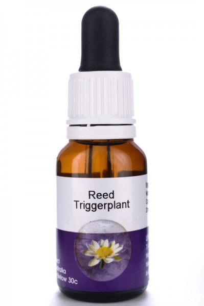 Reed Triggerplant 15ml