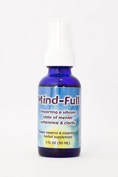 F.E.S. - Mind-Full 30ml