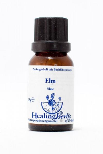 Healing Herbs - Elm (Ulme) Globuli 15gr