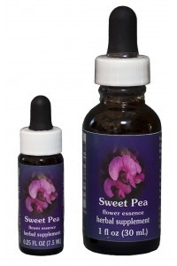 F.E.S. - Sweet Pea (Platterbse)