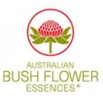 Australische Bushblüten