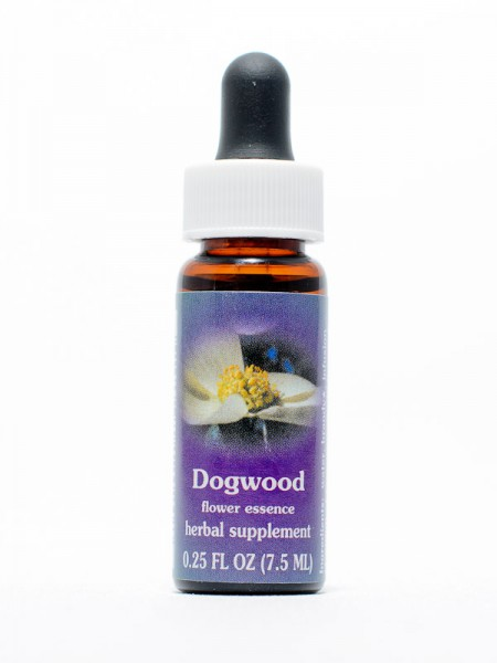 F.E.S. - Dogwood (Hartriegel)