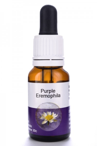 Living Essences Purple Eremophila 15ml (MHD 10/14)
