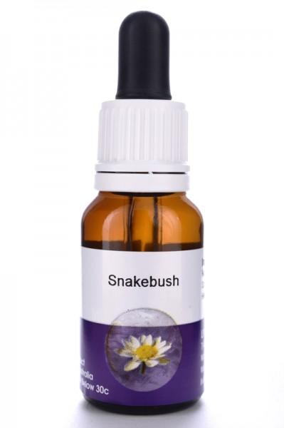 Living Essences Snakebush 15ml