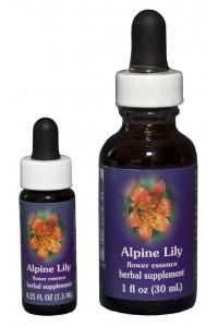 FES - Alpine Lily