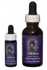 FES - Self-Heal