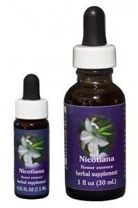 FES - Nicotiana