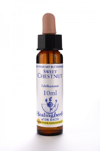 Healing Herbs - Sweet Chestnut (Châtaignier)