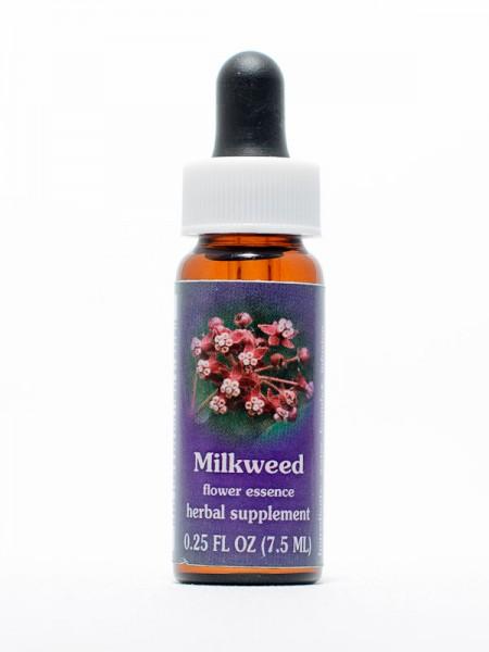 F.E.S. - Milkweed