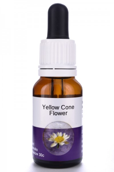 Living Essences Yellow Cone Flower 15ml