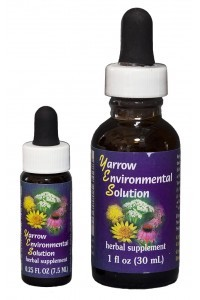 F.E.S. - Yarrow Environmental Solution