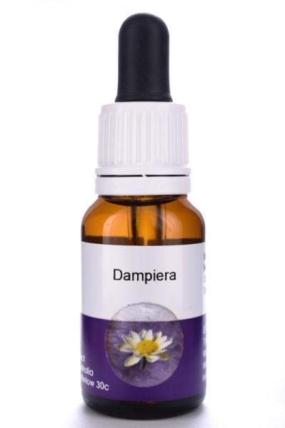 Living Essences Dampiera 15ml