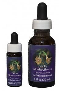 F.E.S. - Sticky Monkeyflower (Klebrige Gauklerblume)