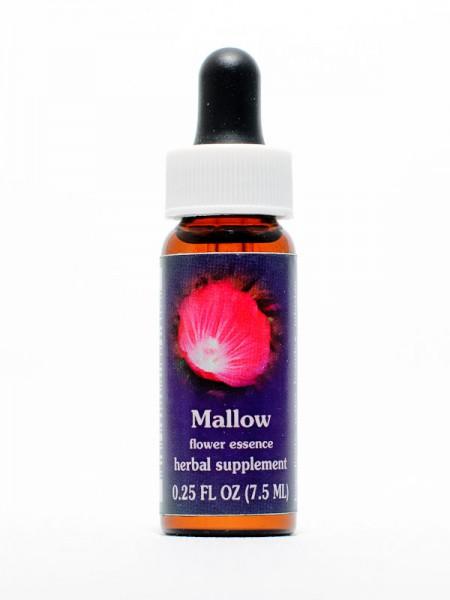 F.E.S. - Mallow (Malve)