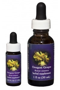 F.E.S. - Oregon Grape