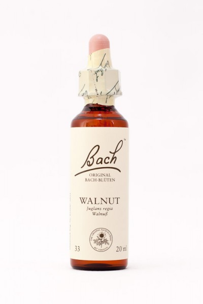 Bach Original - Walnut (Walnuss) 20ml