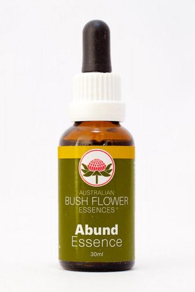 AUB - Abund Essence 30ml